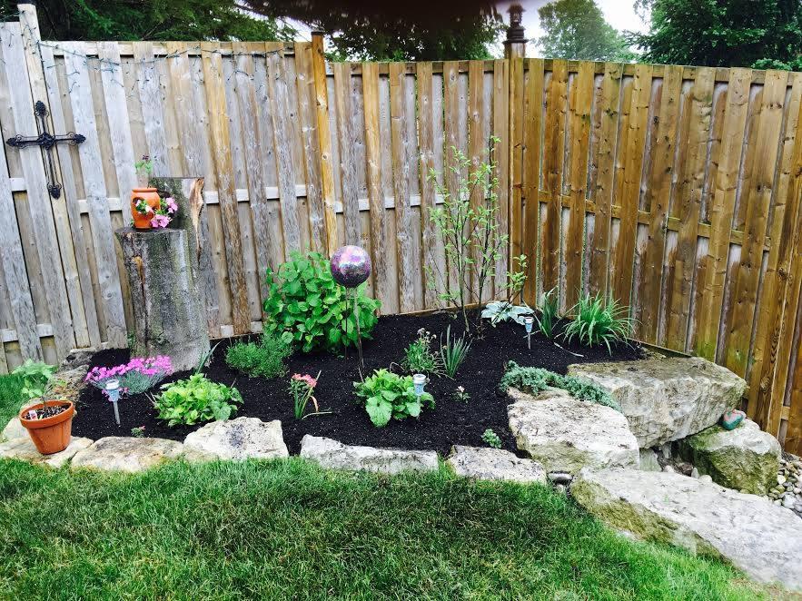 Small Wet Garden Image | Green Ninja Lawn Care Service London Ontario