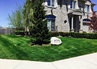 Large Beautiful Lawn Image | Green Ninja Lawn Care Service London Ontario