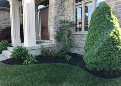 Stunning Bushes Image | Green Ninja Lawn Care Service London Ontario
