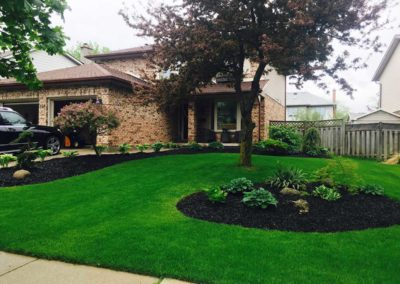Bright Lovely Lawn Image | Green Ninja Lawn Care Service London Ontario