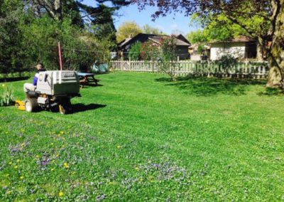 Mowing Grass Large Image | Green Ninja Lawn Care Service London Ontario