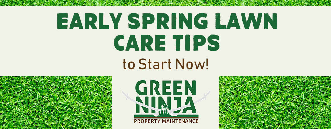 Early Spring Lawn Care Tips To Start Now