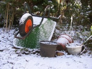 lawn care winter yard debris blog image