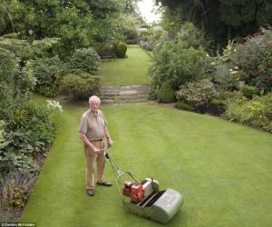 The Best Lawn in England