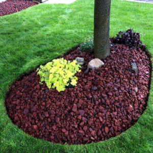 small manicured garden tree image local lawn care company website london ontario