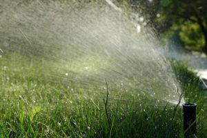 grass lawn sprinkler image local garden blog image local lawn care company website london ontario